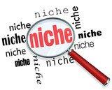 Find Your Niche - Marketing DVD - image